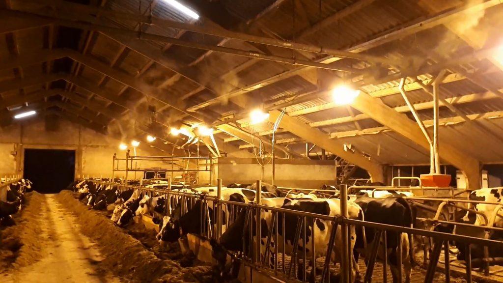 Het stalkoelingssysteem van Atec Solutions biedt dieren in stallen tijdens hitte en droogte een heerlijke verkoeling. Met dit koelsysteem dat een fijne mist vernevelt, kunnen we stallen maar liefst met 5 graden verkoelen. Lees er hier meer over.